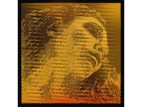 Pirastro EVAHPIRAZZIGOLD set (Ggold) 415021