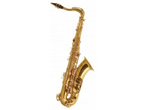 TREVOR JAMES Tenorsax - SR Gold