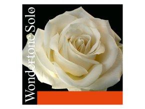 Pirastro WONDERTONE(E) 310321