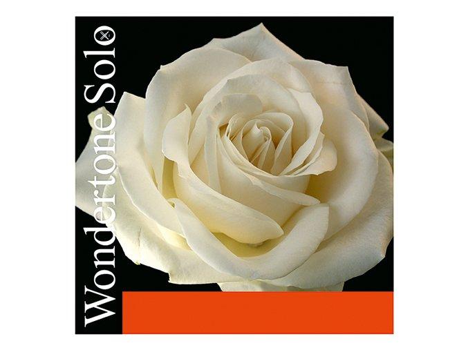 895 pirastro wondertone set 410021