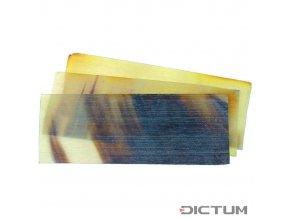 17954 dictum 831089 cow horn plate flat transparent
