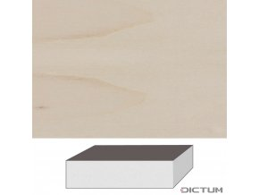 17975 dictum 831109 limewood blocks 1 quality 300 x 130 x 90 mm