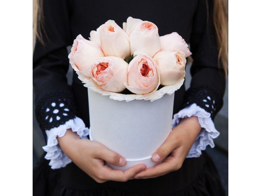 Květinový box - růže Juliet MINI