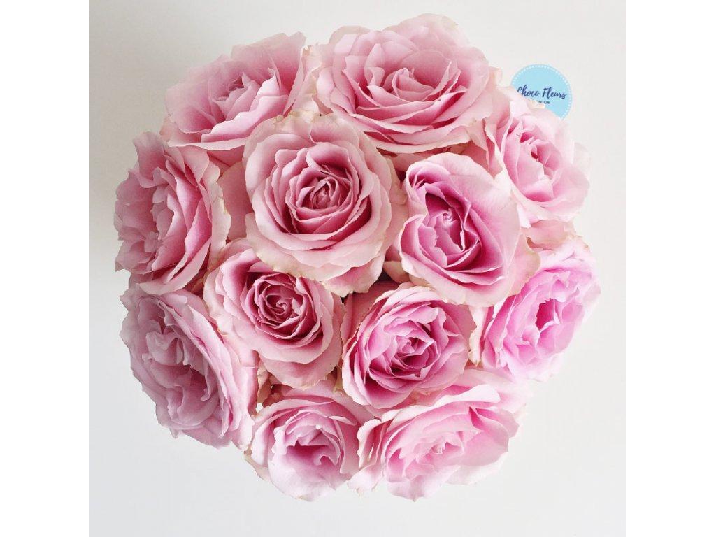 Květinový box - růže Pink Avalanche