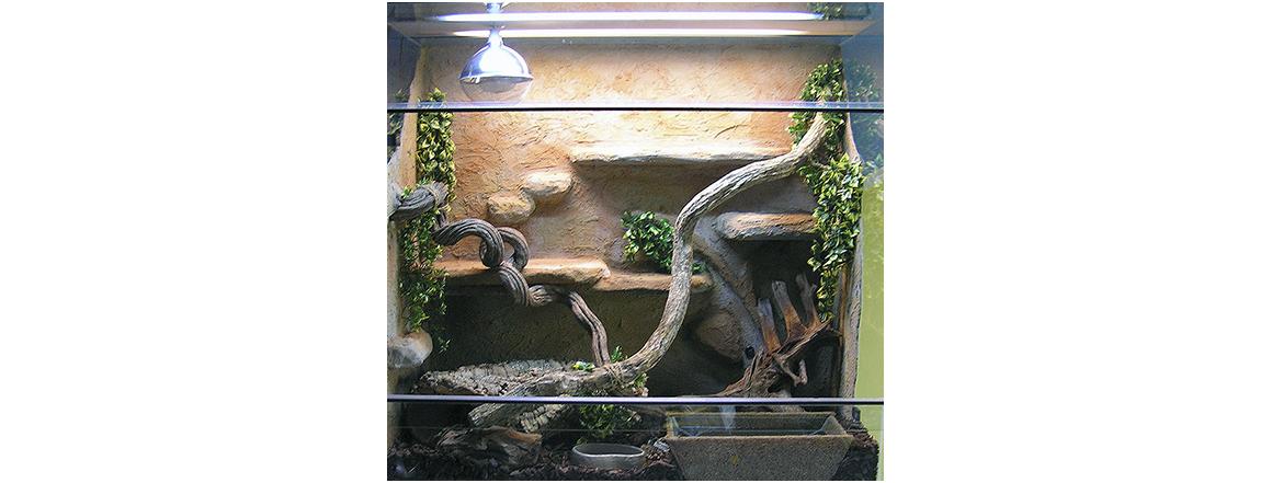 Terárium pro hady - chovatelské potřeby - teraristika