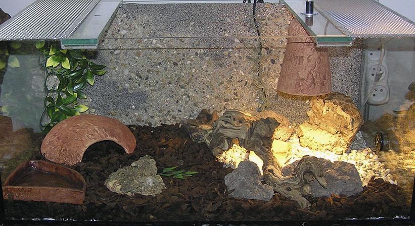 Terárium pro suchozemské želvy - chovatelské potřeby