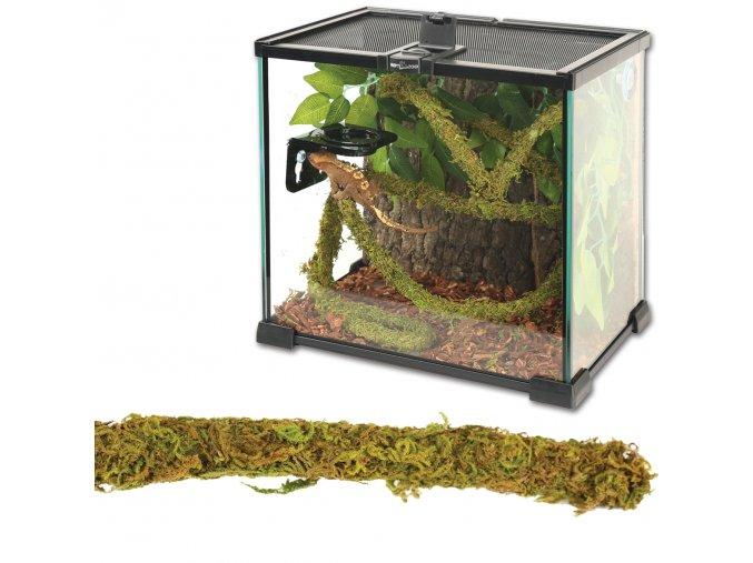 Jungle Vines liána s mechem ReptiZoo
