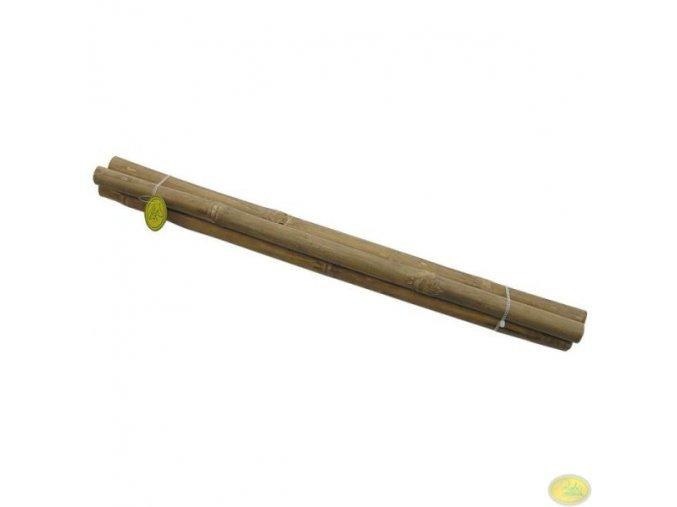 přírodní bambus