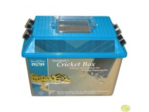 box pro uchovávaní hmyzu