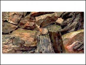 Pozadí akvarijní Root   60 x 30 cm