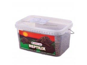 reptilix tortoises 1kg 700