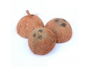 kokosova skorapka