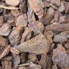 Terarijní kůra 15 - 35 mm 70 litrů piniová