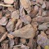 Terarijní kůra 15-35 mm 15 litrů piniová