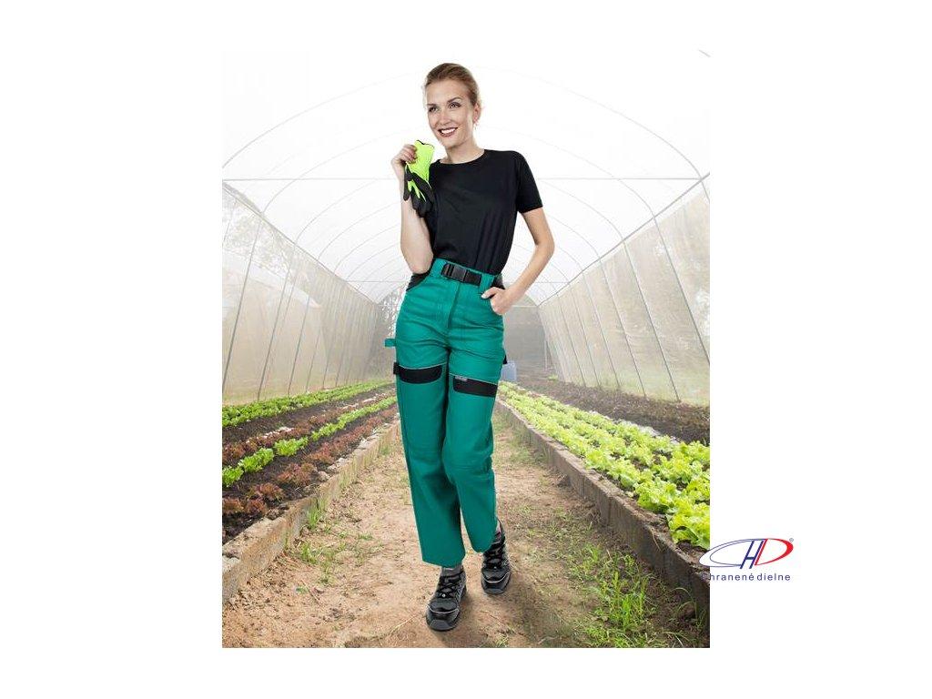 Nohavice do pása COOL TREND dámske zeleno-čierne 38