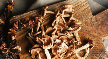 Jak pracovat se sušenými houbami
