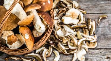 Sušené houby - poklad české kuchyně