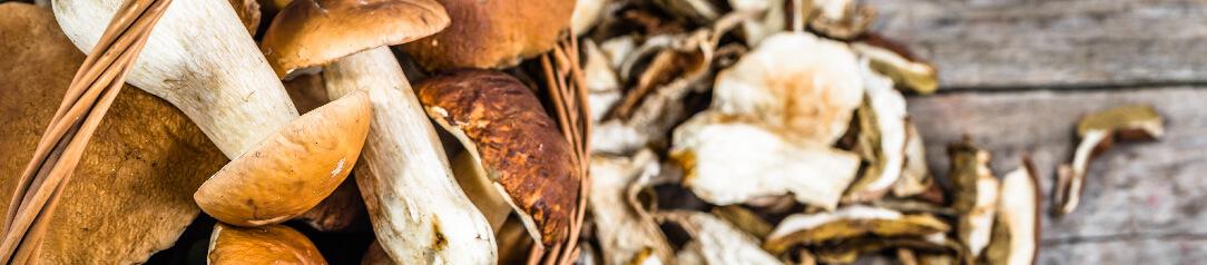 Sušené houby a houby na sušení