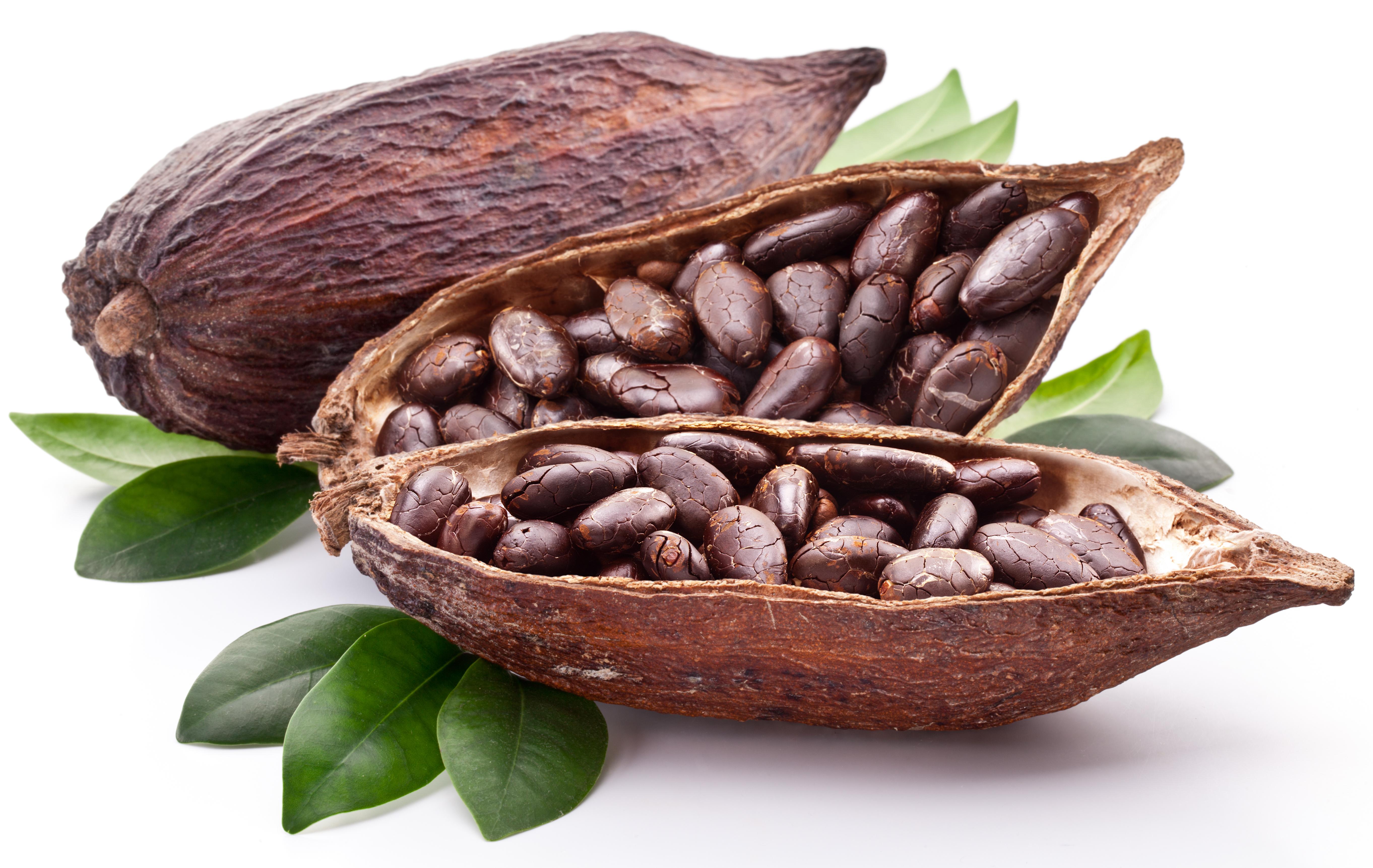 Přírodní kakao z Troubelic