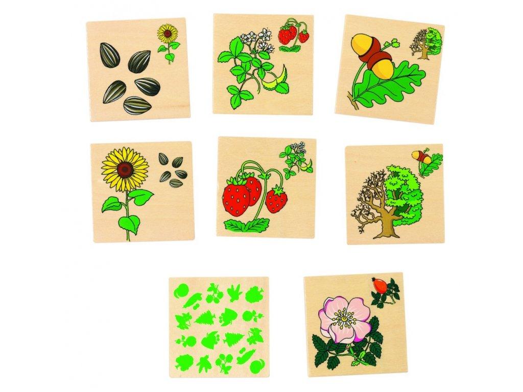 7657 plody a rostliny drevene pexeso 32 dilku