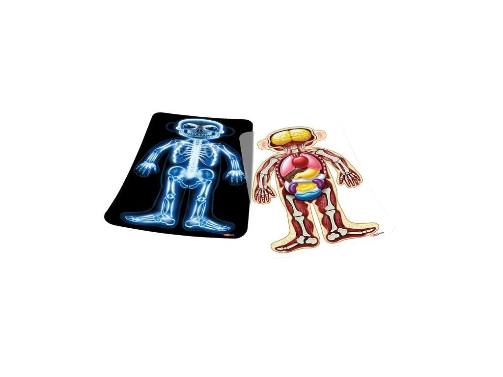 8931 prvni pohled dovnitr rentgenove snimky k plysove panence s organy
