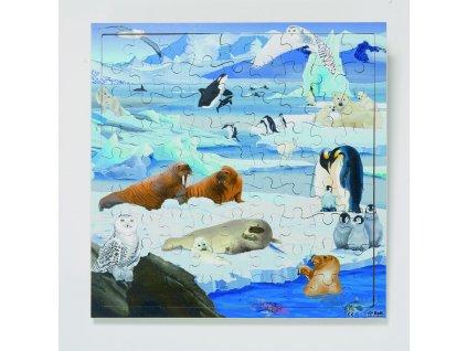"""""""Živé"""" dřevěné puzzle Zvířátka z antarktidy Rolf + aplikace k """"oživnutí"""""""