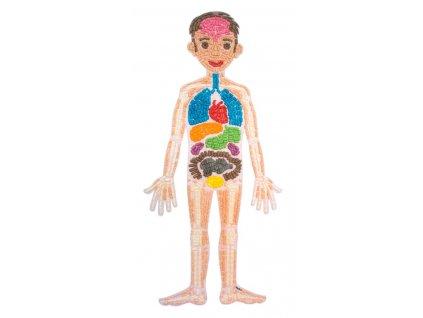 """Velké anatomické puzzle PlayMais® Classic """"Moje tělo"""""""