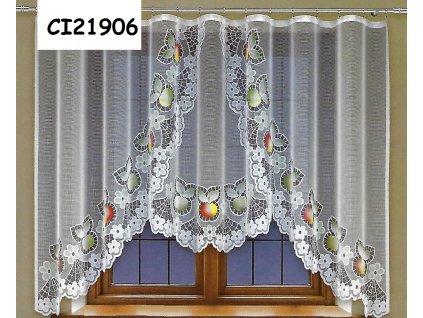 CI21906
