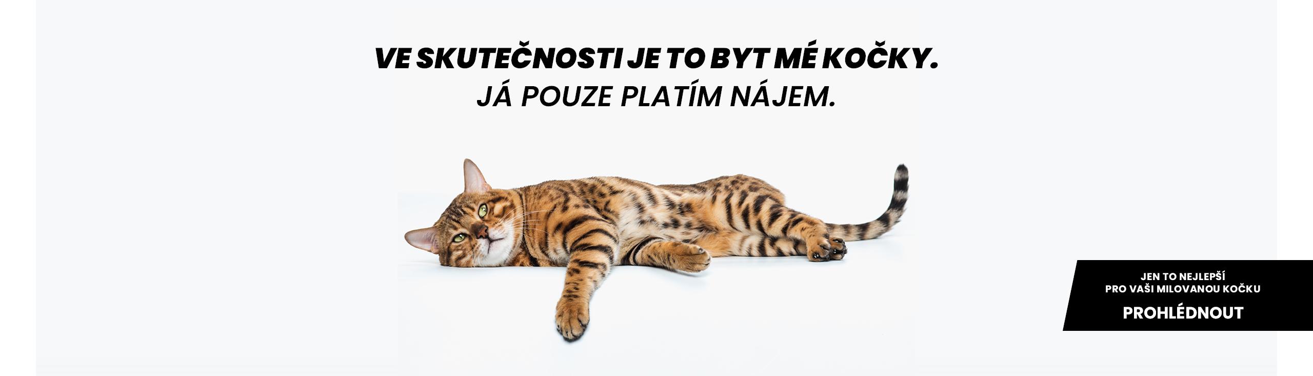 Designové potřeby pro kočky