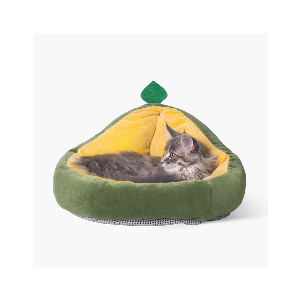 pelisek pro kocky avokado (5)
