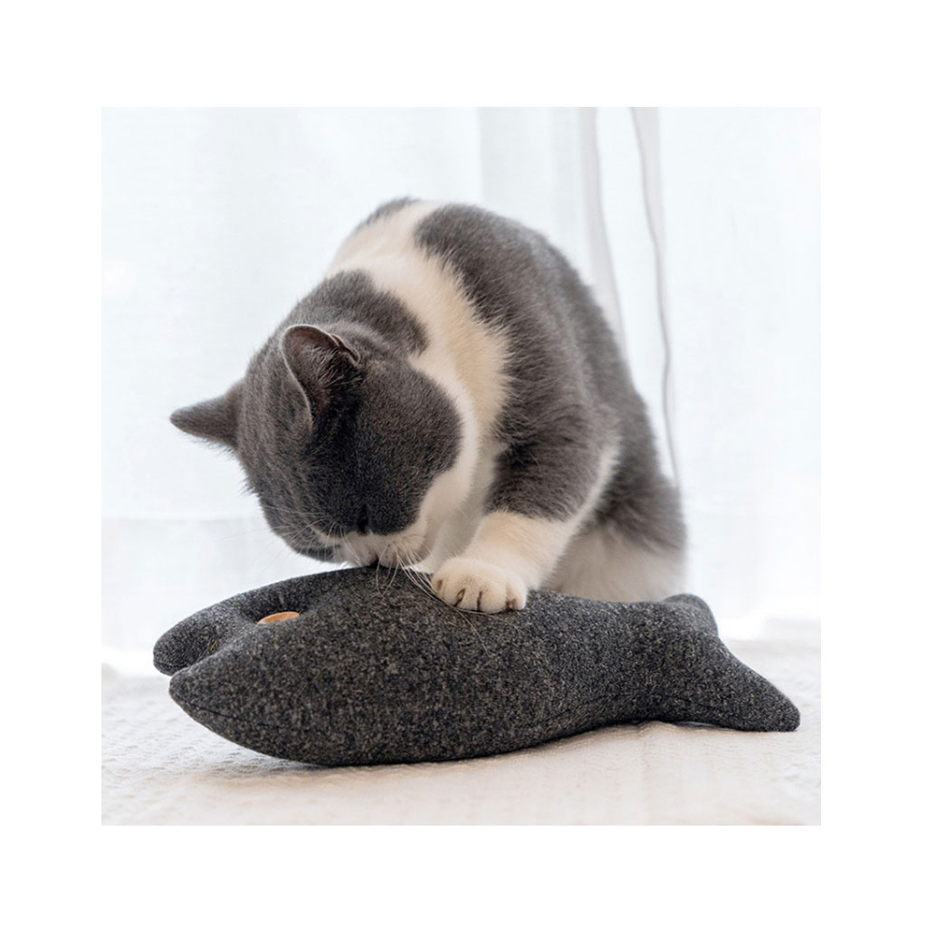 hracka pro kocky ryba (2)