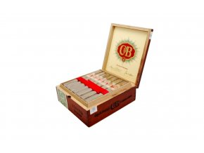 cyb coronareal box 1340x840