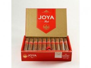 Joya red short churchill