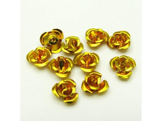 RHL0001H hlinikove ruzicky zlate