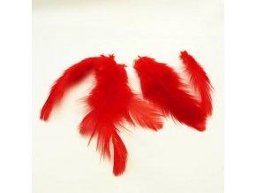PER0005 pericka cervena