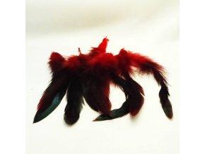 PER0011 pericka cervena