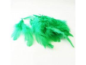 PER0013 pericka zelena