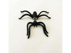 BNC0343 nausnice pecky pavouk