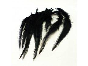 PER0022 pericka cerna