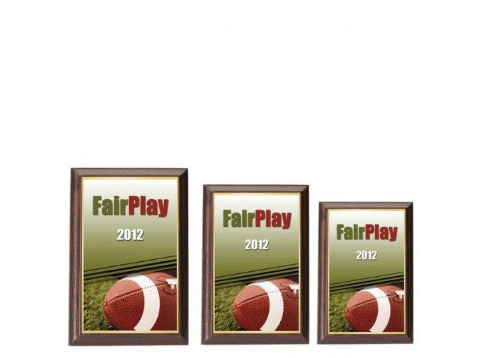 Plaketa  CPLP3M34 americký fotbal (rugby)