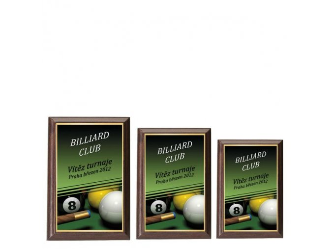 Plaketa  CPLP3M16  billiard