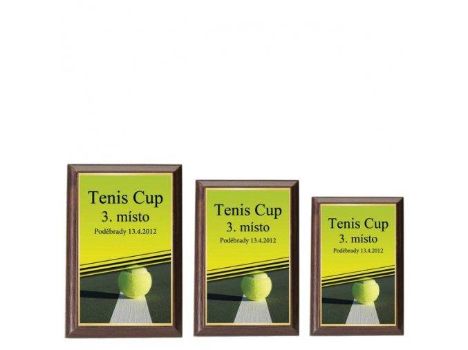 Plaketa  CPLP3M5  tenis