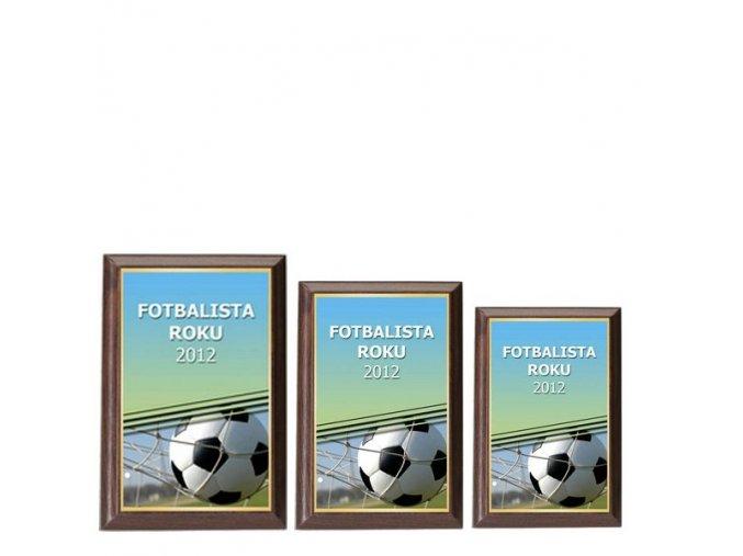 Plaketa  CPLP3M1  fotbal