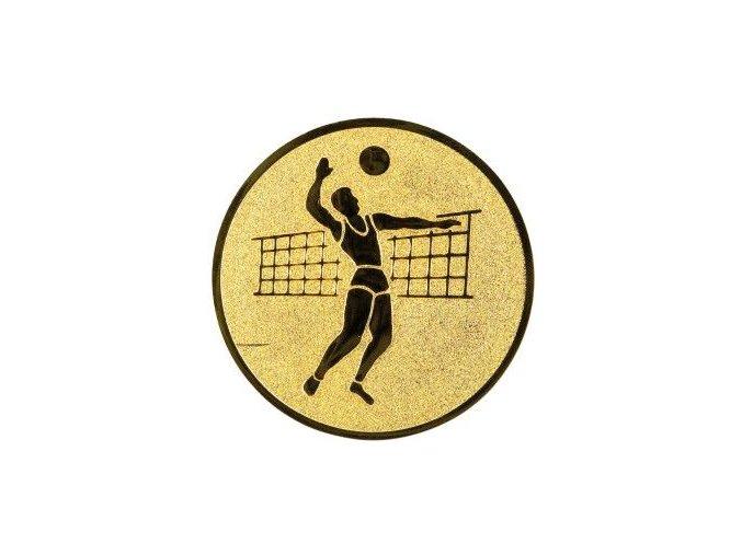 Emblém  CE019  volejbalista