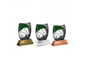 Akrylátová trofej ACE2002M29 Karty