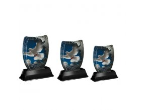 Akrylátová trofej ACE2001M36