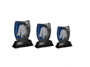 Akrylátová trofej ACE2001M33 Karate