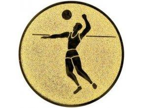 Emblém  CE021  volejbalista