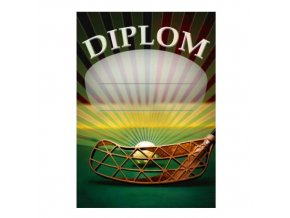 Diplom D29 A4 florbal