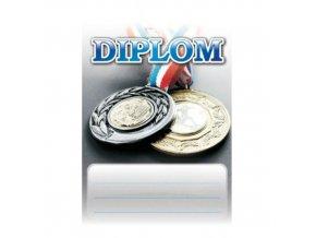Diplom D24 A4 medaile